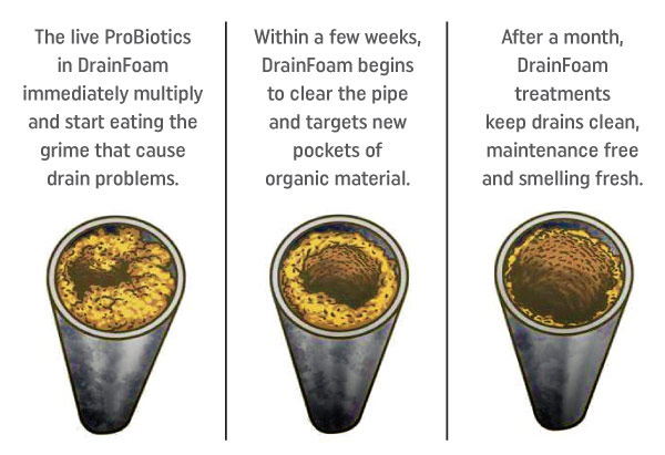 Clogged pipes